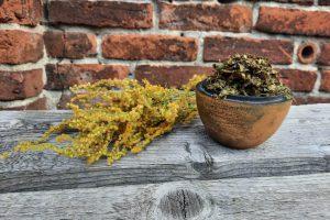Herbata utleniana z liści i kwiatów nawłoci
