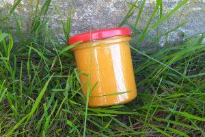 Miód mniszkowy z cynamonem