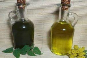 Macerat olejowy na nasionach i młodym zielu pokrzywy