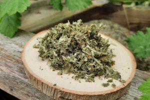 Herbata utleniana z młodych liści i kwiatów dzikiej jabłoni