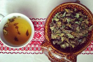 Herbata utleniana z młodych pędów rdestowca