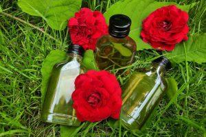 Macerat olejowy różany z płatków róży